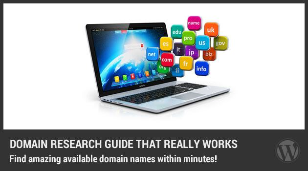 How to Find The Perfect New Domain for Your Niche Site
