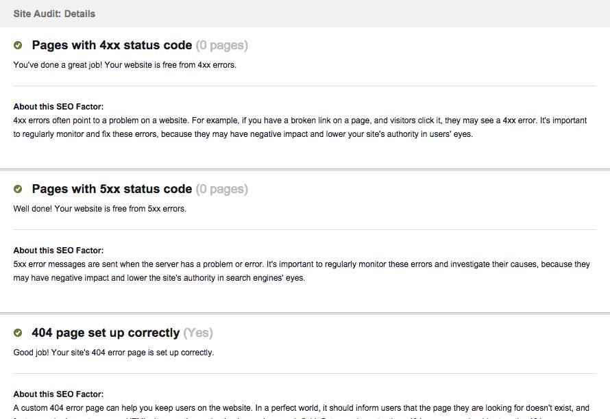 Website Auditor - 06