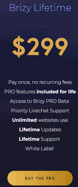 Brizy Lifetime deal page builder